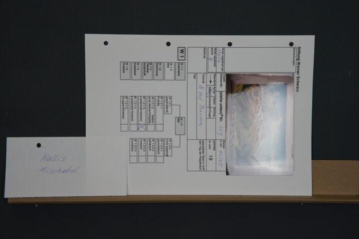 0006 3 Stiftung Werner Schwarz | Bern Schweiz