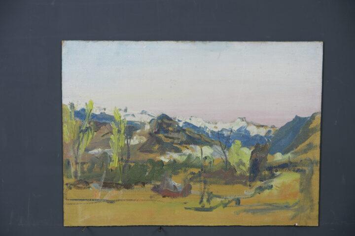 0049 1 Stiftung Werner Schwarz   Bern Schweiz