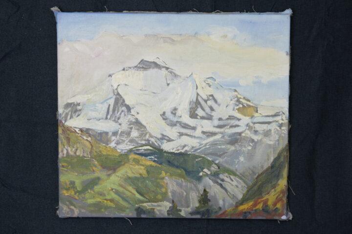 0132 1 Stiftung Werner Schwarz | Bern Schweiz