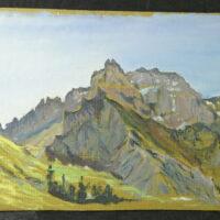 0143 1 Stiftung Werner Schwarz | Bern Schweiz