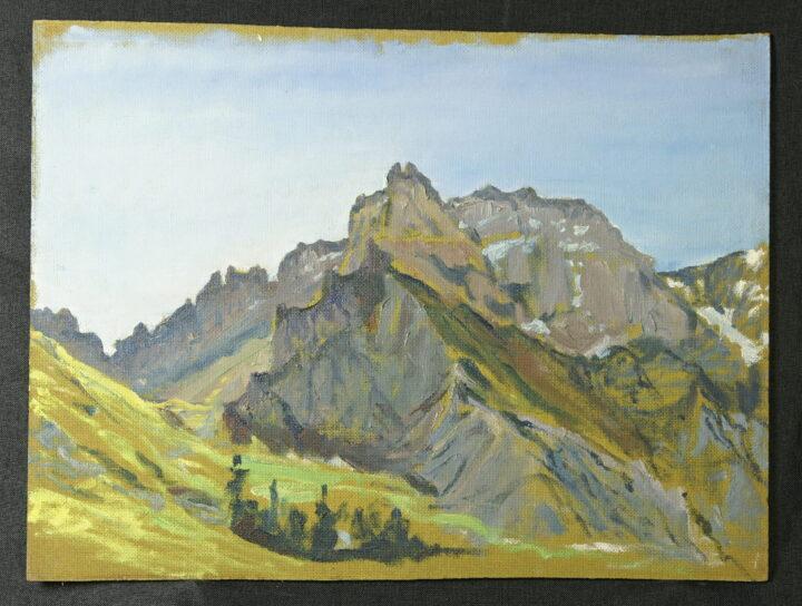 0143 1 Stiftung Werner Schwarz   Bern Schweiz